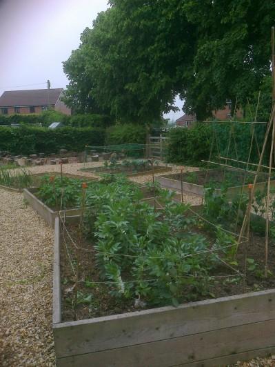 Overview of the various beds in the School Garden