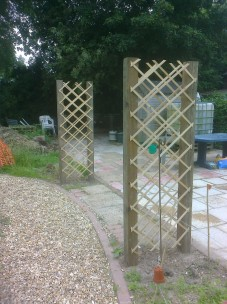 Some new trellis panels I erected recently