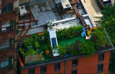 Penthouse roof garden, New York, via Rezpector de Blanco