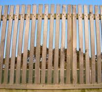 A slatted fence can provide a wind break