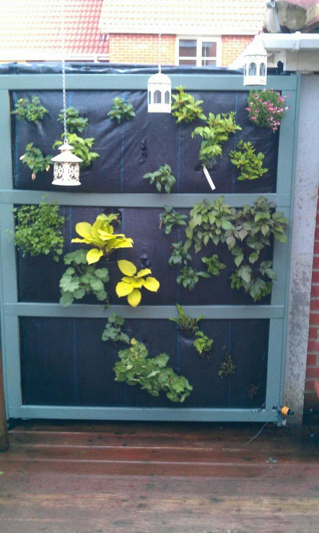 vertical planter adam haden