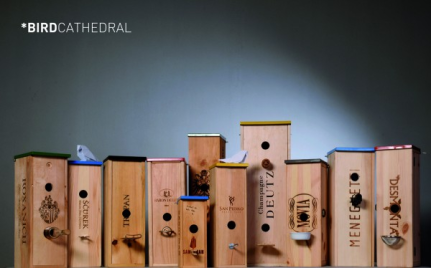Wine boxes become 'bird cathedrals' from recyclart.com