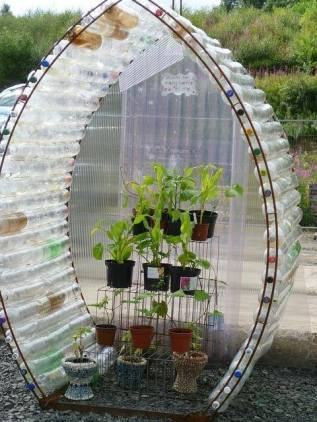 A novel take on the recycled plastic bottle greenhouse