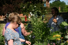 Jelly Cottage Plants did brisk business- see them at Old School Garden open day on 14th July!
