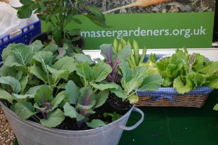 Some impressive home grown veg
