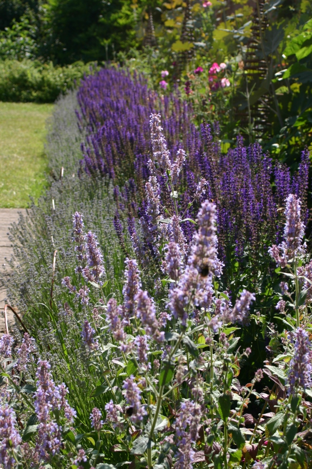 Want to improve the attractiveness and functioning of your garden? Then read on...
