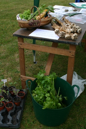 Some produce for sale at Aylsham 'Fun Day'