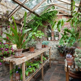 A second greenhouse offers the chance of presenting choice plants