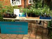 Garden volunteers sold lots of plants..