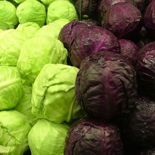 771px-Cabbages_Green_and_Purple_2120px