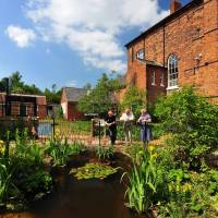 Gressenhall Wildlife Garden on 'Garden Party' from Radio Norfolk!