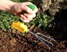 Special tools can be useful for the disabled gardener