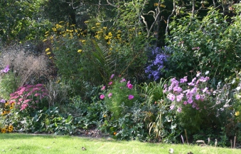 One of the mixed borders
