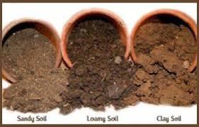 Different soil types