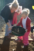 Sieving the soil...