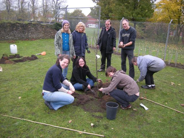 Getting to grips with fruit tree planting- the group at Wensum View Park