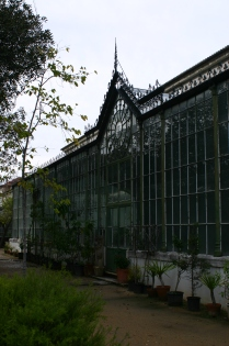In the glasshouse...