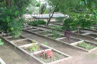 Beds for exotic specimen plants