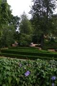 Views from the upper garden..