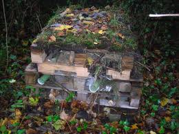 'Bug Hotels' can provide a 'Des Res' for many insects and other critters