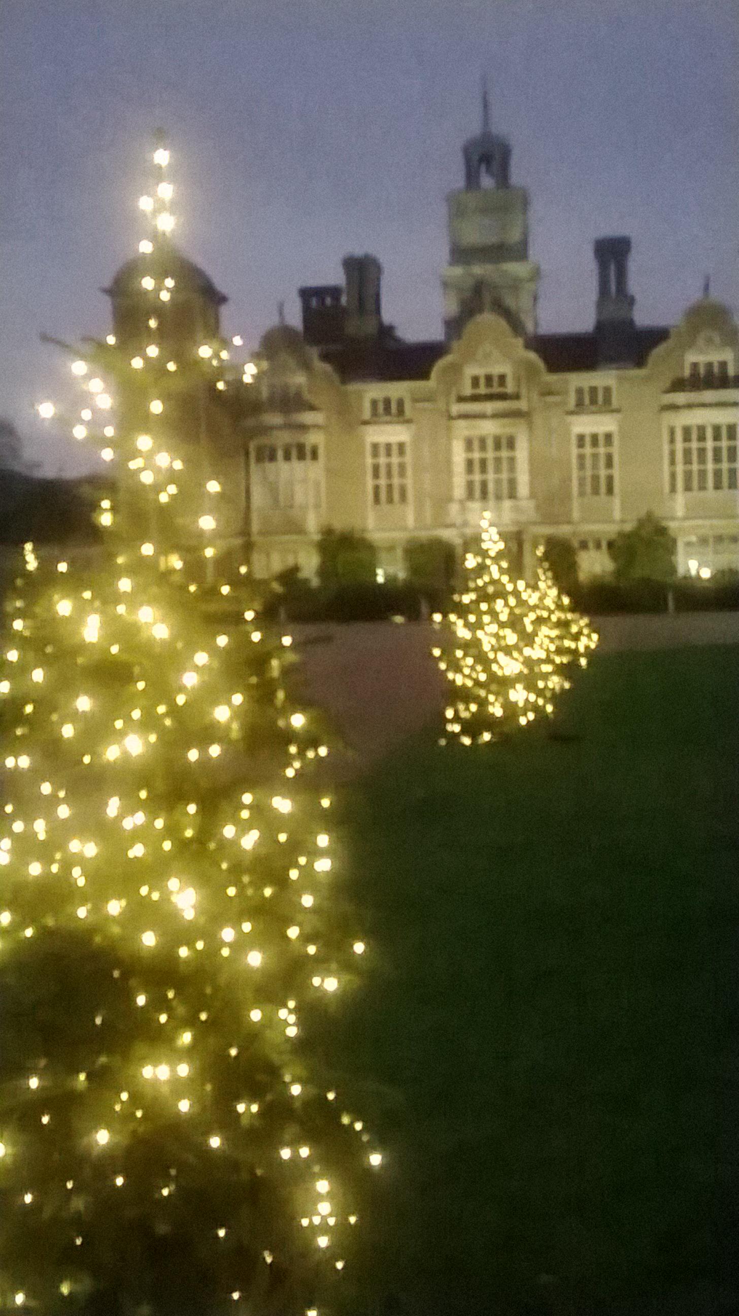 Picpost Blickling At Christmas Old School Garden