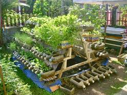 An 'A' frame planter with old plastixc bottles, and cartons as containers..