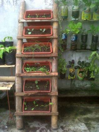 A planter ladder....