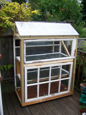 A greenhouse from old windows...