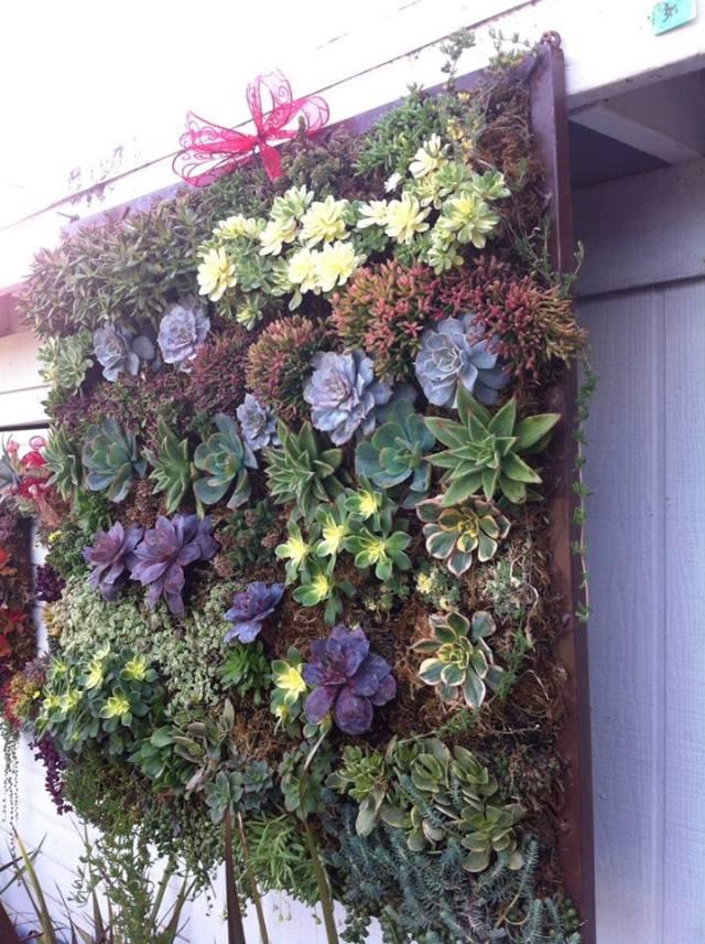 PicPost: Plant Pallette