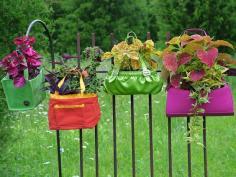 bag planters