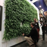 Mobilane launches irrigation-free living wall