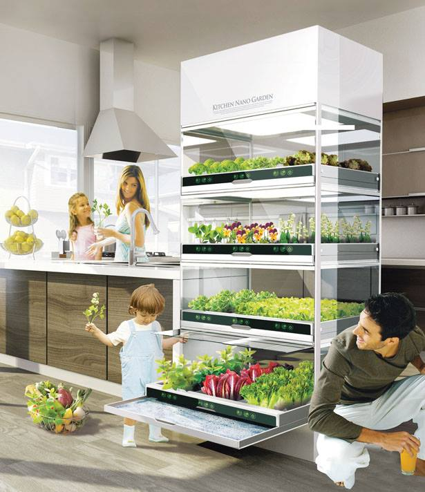 PicPost: Kitchen Garden of the Future?