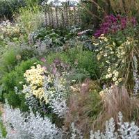 GQT: Herbaceous Borders