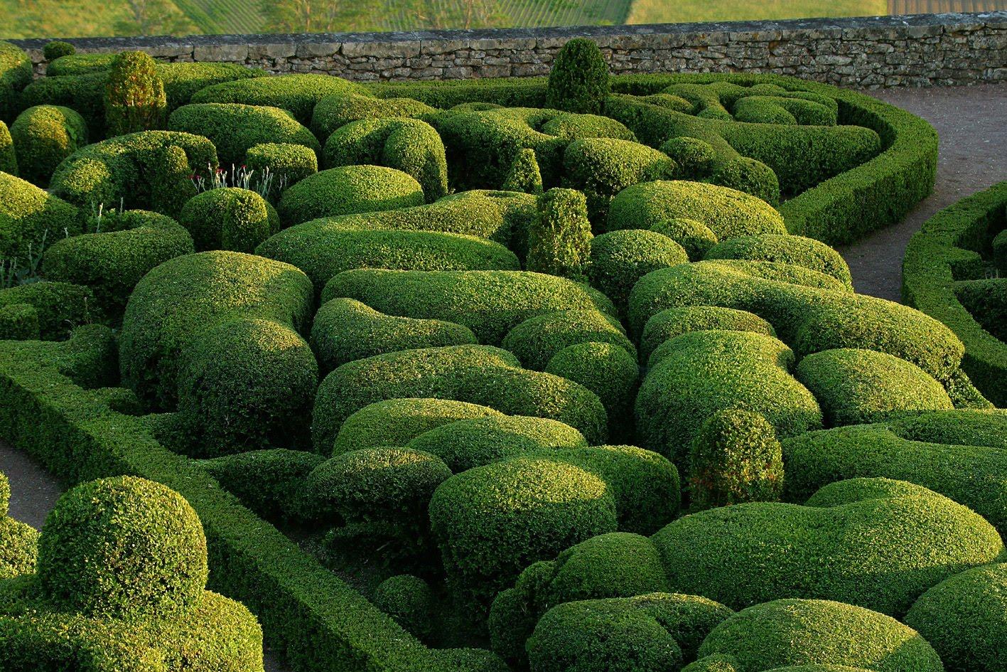 Planting patterns 7 old school garden - Jardin topiaire ...