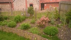 Dyer's Garden at Gressenhall FW