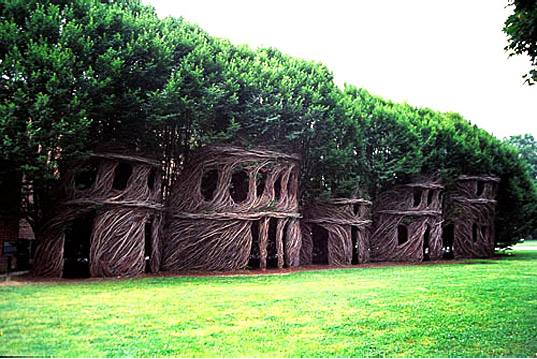 houses from woven  trees green renaissance