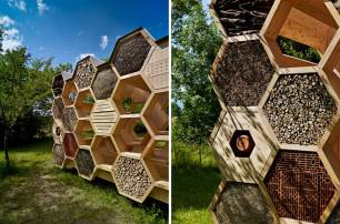 Talking of bee hives, here's a hotel with a hexagonal cell structure just like the inside of a hive