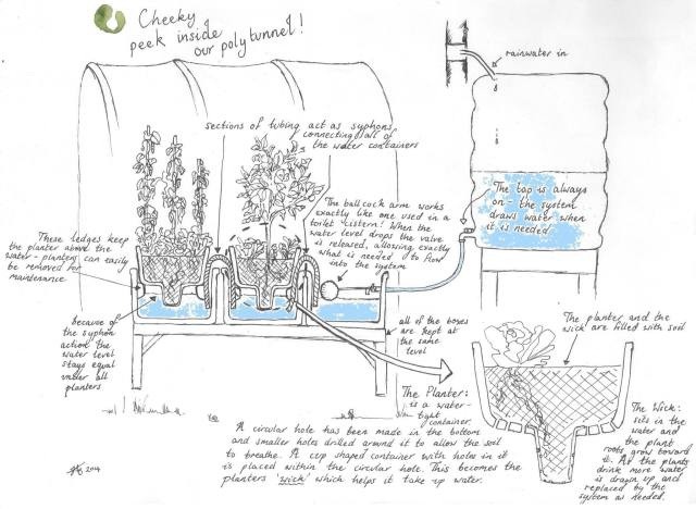 cunning self watering system from Guillermo via Vertical Veg