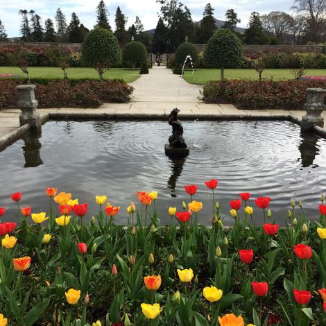 The garden at Powerscourt