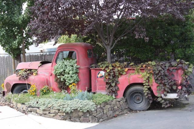 Picture via 1001 Gardens