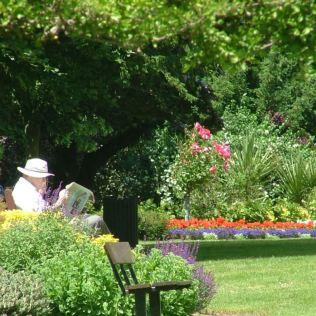 Elmhurst Park, Woodbridge