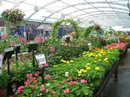 -garden-centre