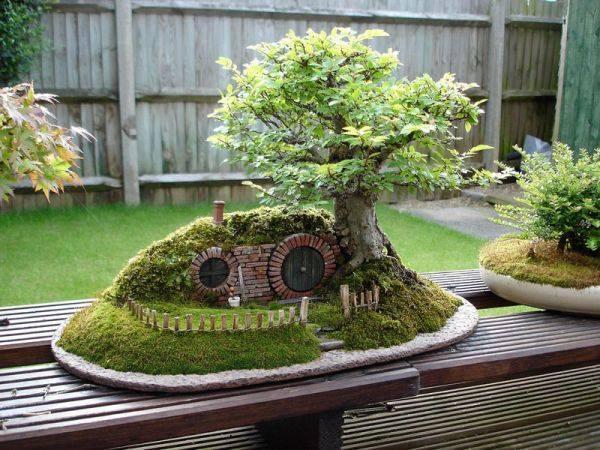 hobbit bonsai via green renaissance