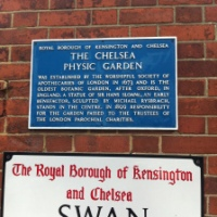 The Chelsea Physic Garden London (Probably the only place legally growing Cannabis in Central London)
