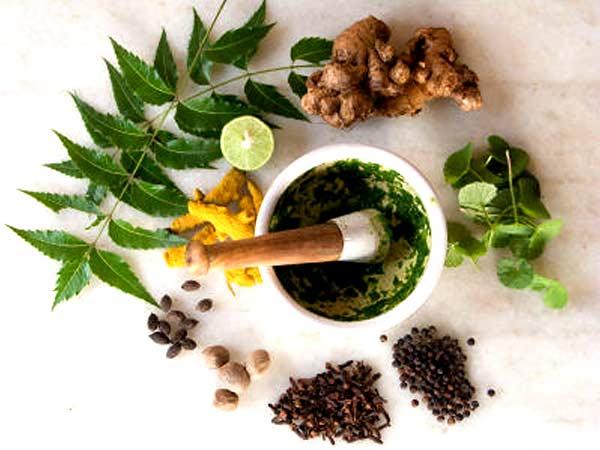 kind-of-herbs