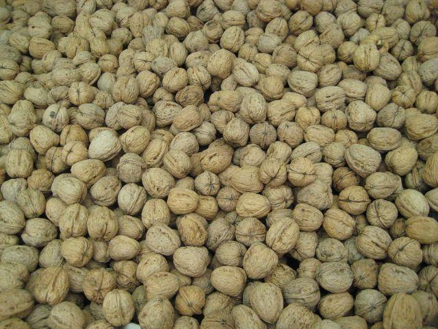 1280px-Walnuts