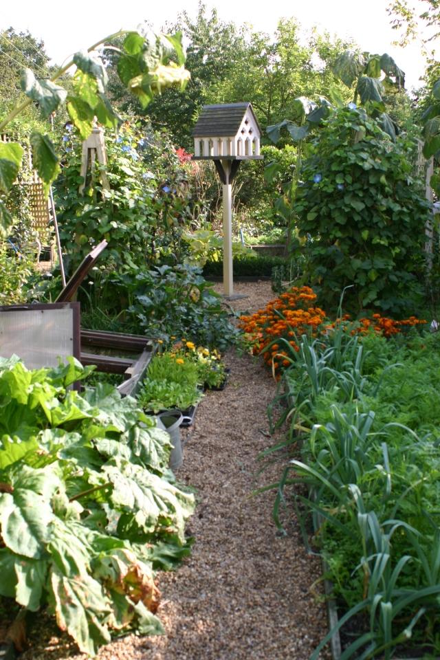 The Kitchen Garden in autumn - 'fulsome'