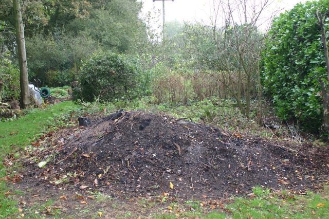 The old (unsafe) bonfire area- room for improvement