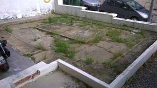 Before- weeds in concrete at our daughter and son in law's flat in Almada