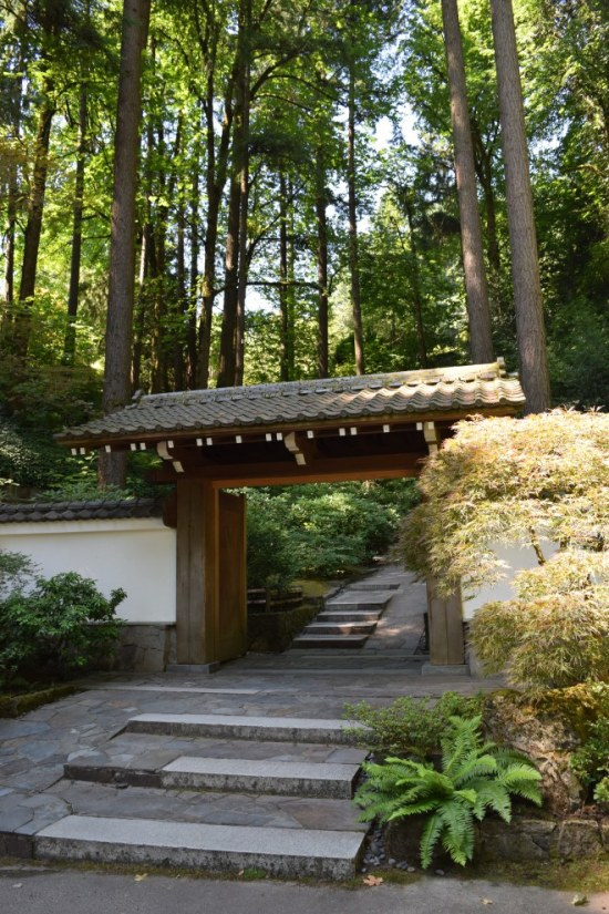 Trees of the Pacific Northwest tower over the entrance to the Portland Japanese Garden.